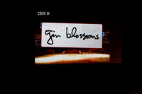 20130522 WED IBM SPECIAL EVENT - GIN BLOSSOMS
